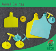 Animal Ear tag