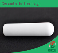 Ceramic bolus tag