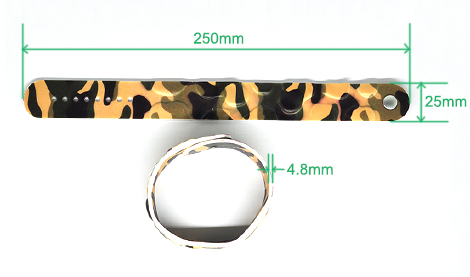 Size: 250*25*4.8mm